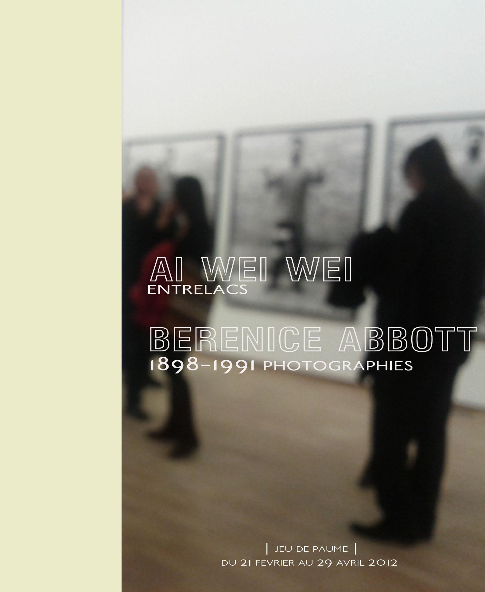 aiweiwei_jeudepaume_by_le_polyèdre