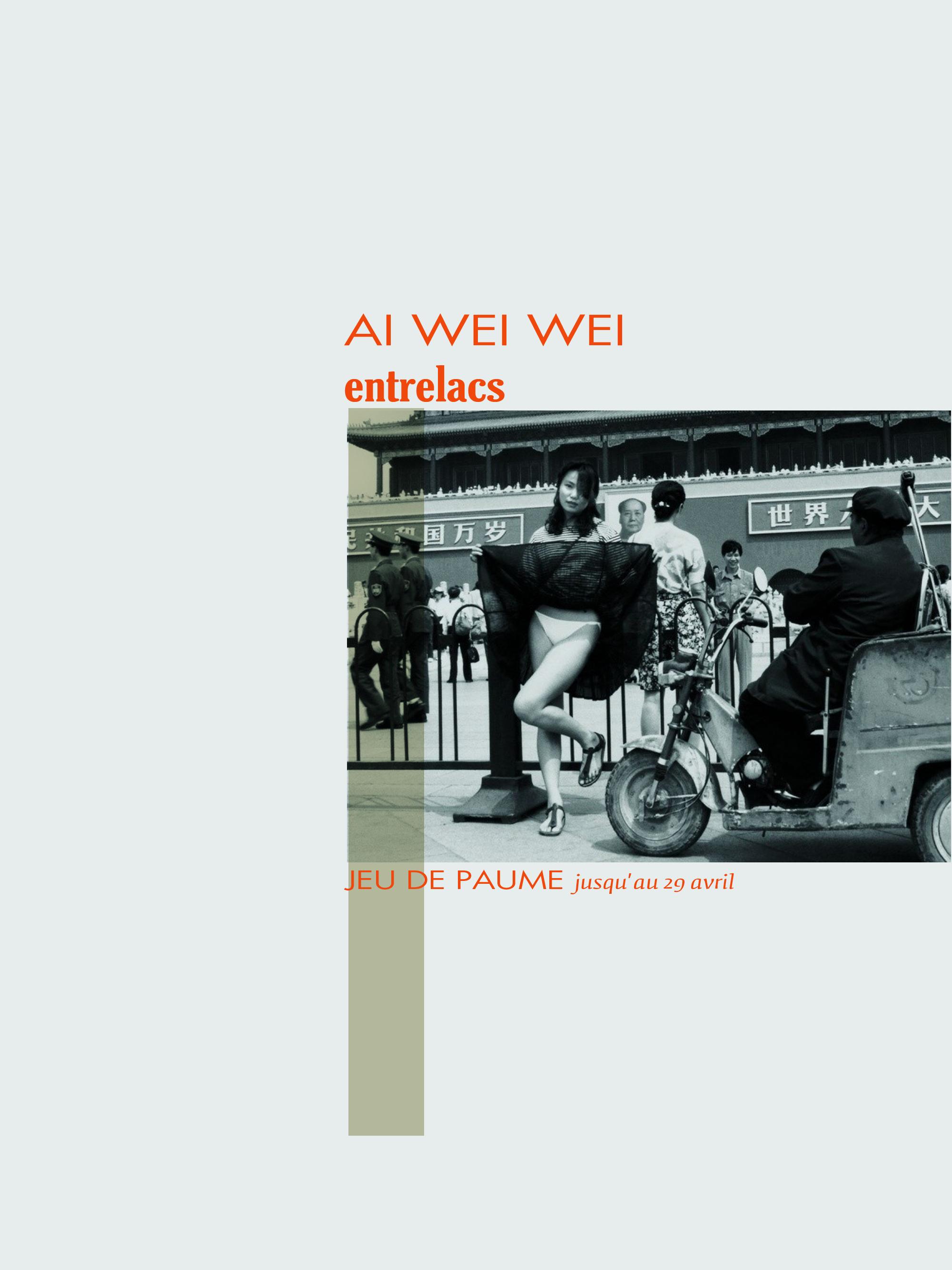 AI wei wei_jeudepaume_paris_expo_by_le-polyèdre_0