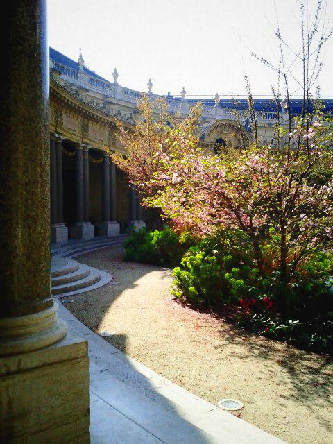 O trouver du soleil sans la foule le poly dre for Cafe le jardin du petit palais