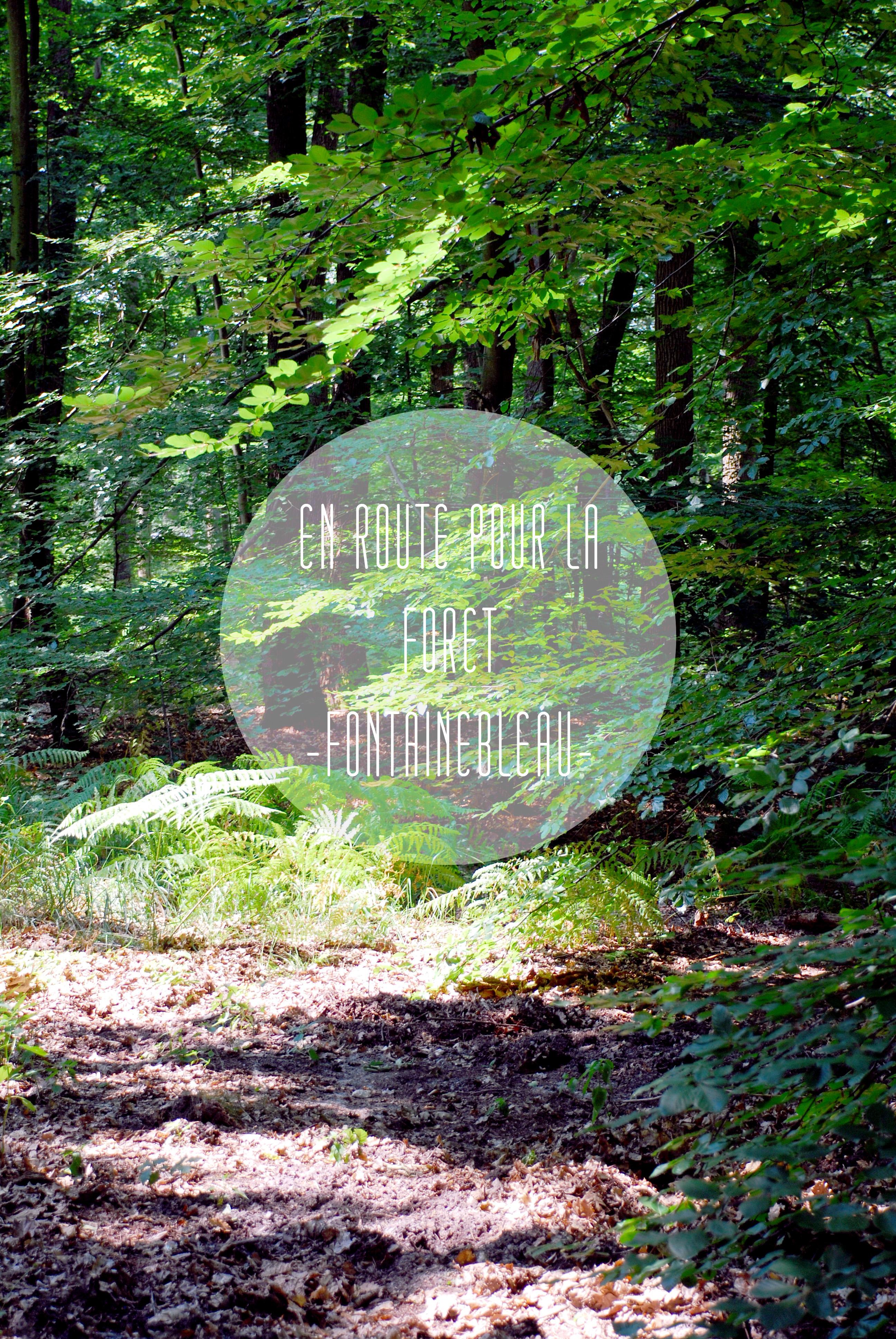 fontainebleau-paris-foret-idee-escapade-voyage-by-le-polyedre_VISUEL