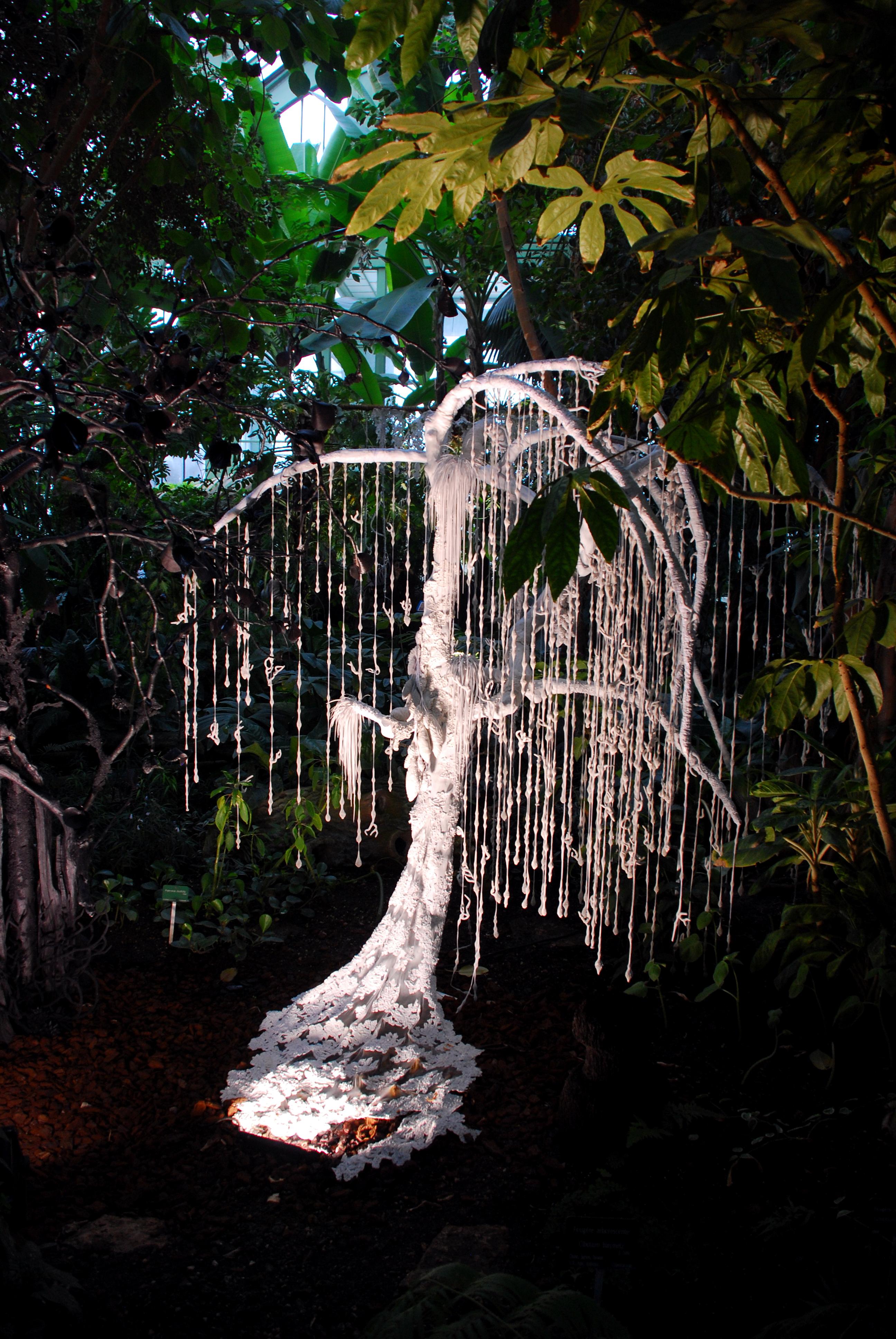 Les serres du jardin des plantes sublim e par une for Exposition jardin paris 2016