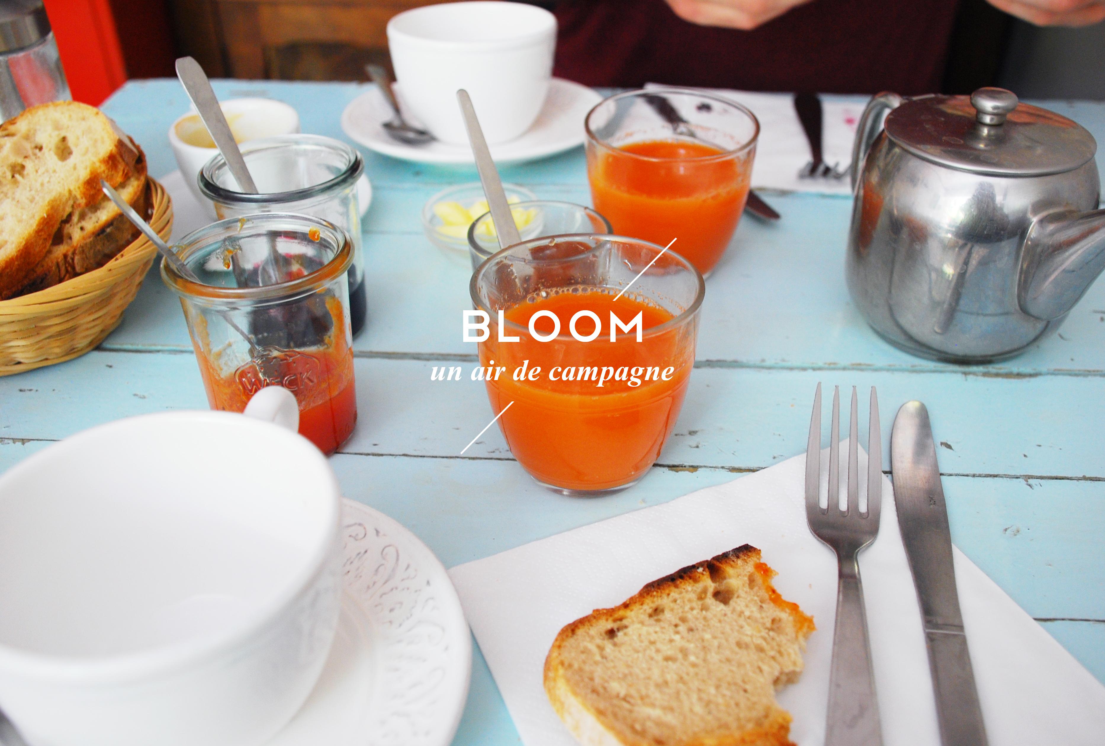 bloom-restaurant-bio-produits-locaux-paris-11-by-le-polyedre_visuel