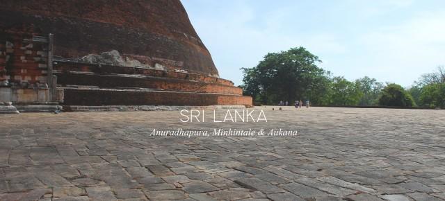 CARNET DE VOYAGE #03 SRI LANKA / ANURADHAPURA, MINHINTALE & AUKANA