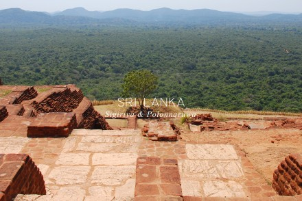 carnet-voyage-sri-lanka-sigiriya-by-le-polyedre_visuel