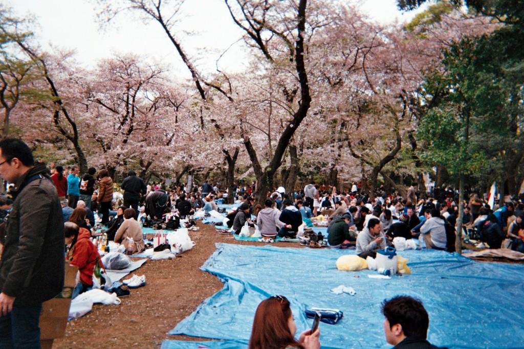 carnet-voyage-japon-appareil-photo-jetable-tokyo-by-le-polyedre (1)