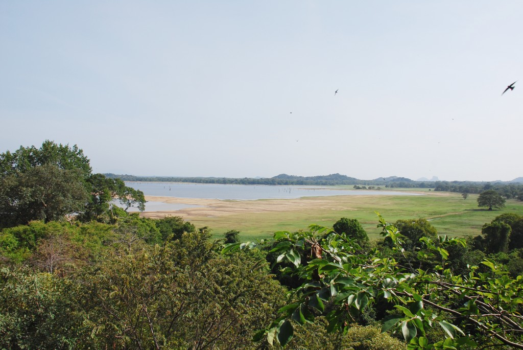 carnet-voyage-sri-lanka-sigiriya-heritance-kandalama-hotel-by-le-polyedre_5