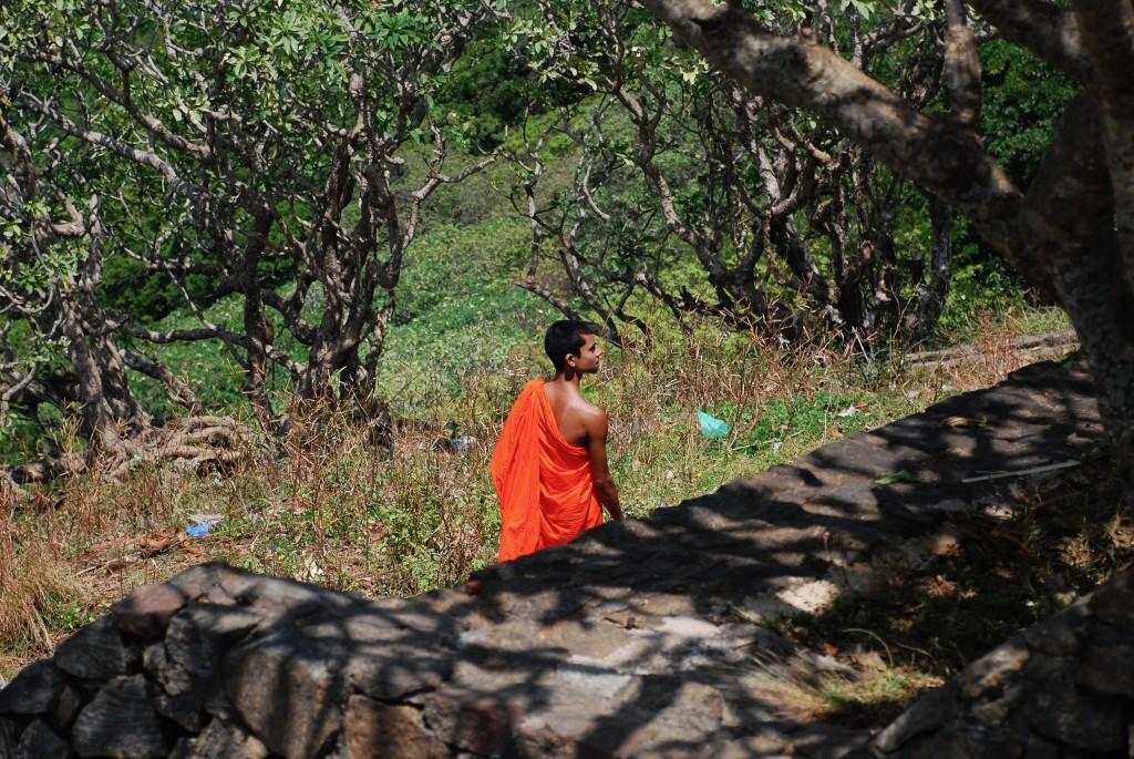 carnet-voyage-sri-lanka-dambulla-by-le-polyedre_13