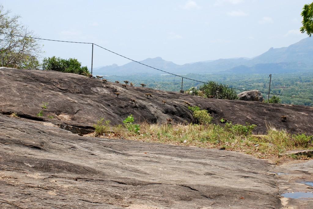 carnet-voyage-sri-lanka-dambulla-by-le-polyedre_24
