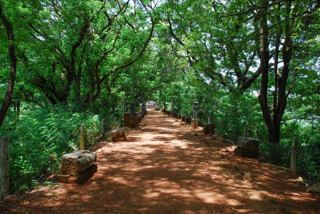 carnet-voyage-sri-lanka-nalanda-gedige-by-le-polyedre_26