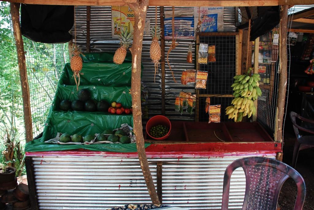 carnet-voyage-sri-lanka-route-des-epices-by-le-polyedre_28