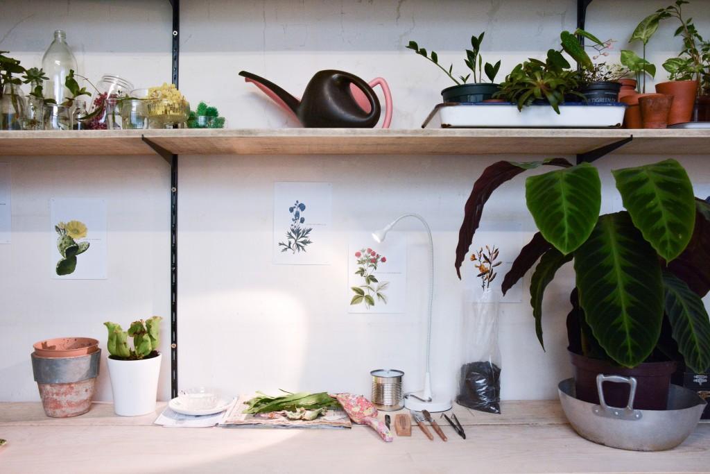 les-grands-voisins-mama-petula_concept-store-vegetal-paris-14-by-le-polyedre (11)