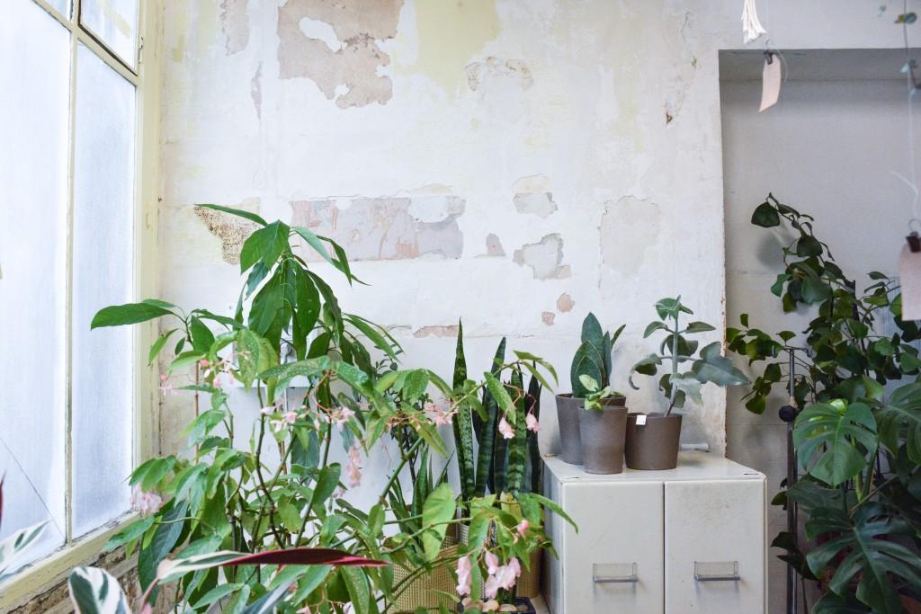 les-grands-voisins-mama-petula_concept-store-vegetal-paris-14-by-le-polyedre (14)