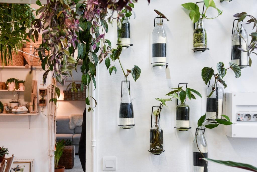 les-grands-voisins-mama-petula_concept-store-vegetal-paris-14-by-le-polyedre (15)