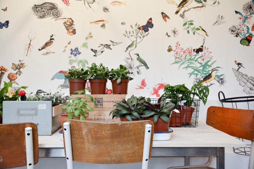 les-grands-voisins-mama-petula_concept-store-vegetal-paris-14-by-le-polyedre (5)