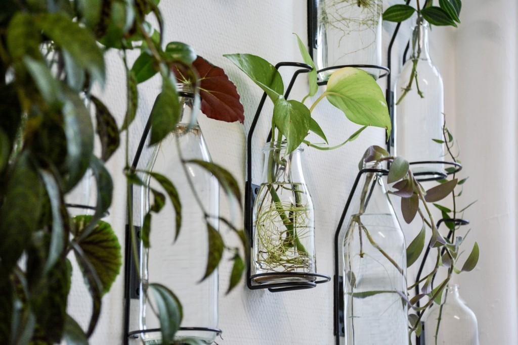les-grands-voisins-mama-petula_concept-store-vegetal-paris-14-by-le-polyedre (9)
