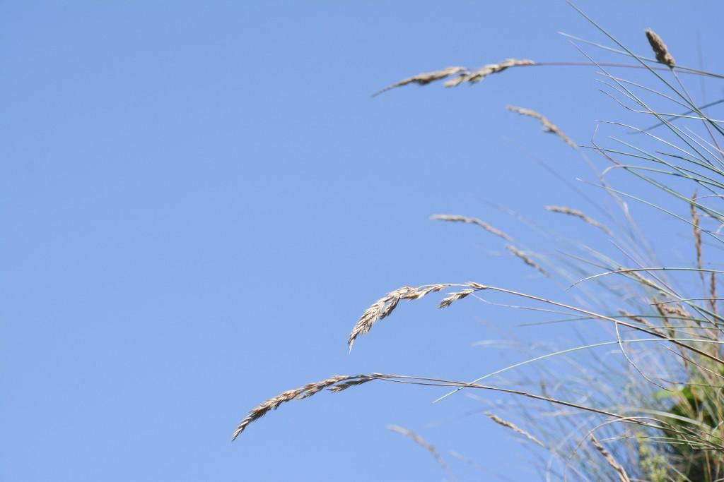 week-end-bretagne-morbihan-lorient-ile-de-groix-voyage-by-le-polyedre (107)