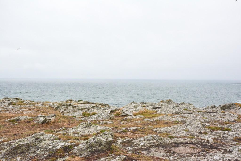 week-end-bretagne-morbihan-lorient-ile-de-groix-voyage-by-le-polyedre (147)