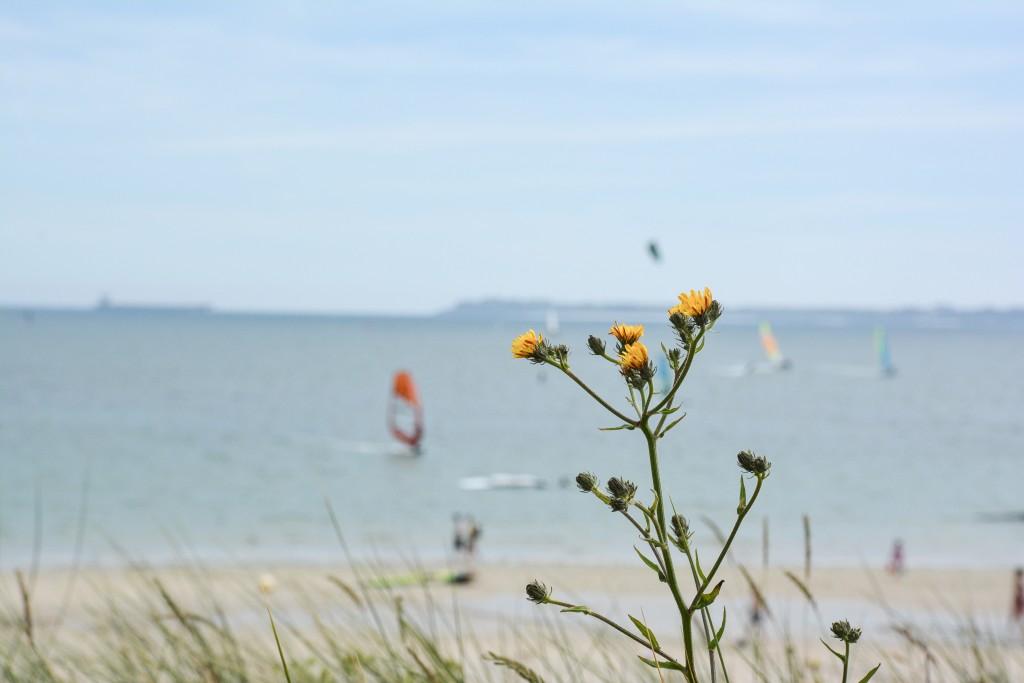week-end-bretagne-morbihan-lorient-ile-de-groix-voyage-by-le-polyedre (28)