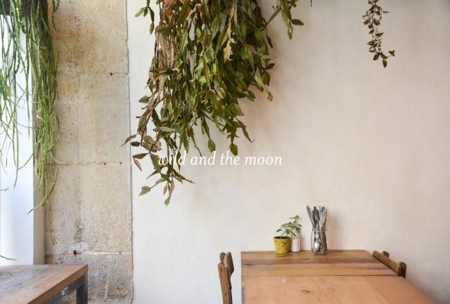 wild-and-the-moon-juice-bar-restaurant-paris_visuel