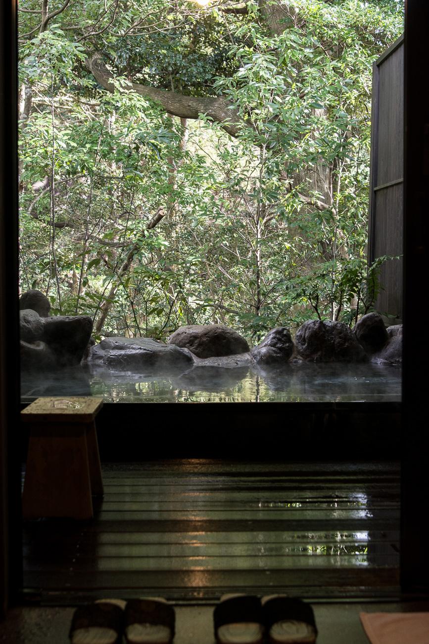 voyage japon hakone onsen