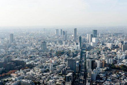 voyage tokyo cityguide tokyo city view panorama observatoire tokyo