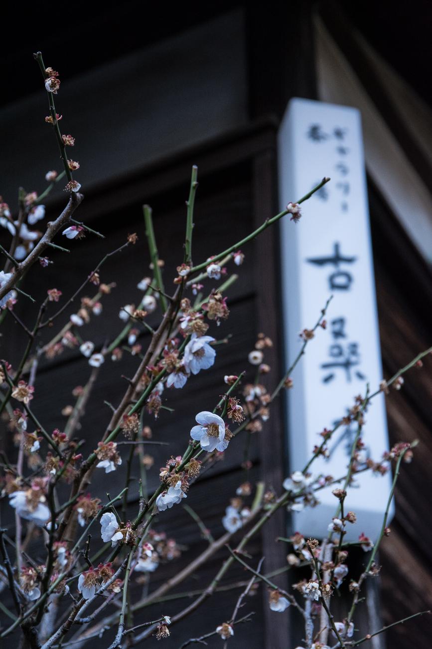 voyage tokyo kosoan maison de thé tradionnelle caché