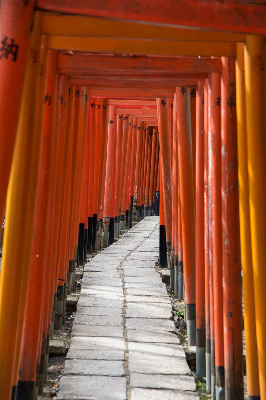 Nezu Shrine avec ses torii rouges dans le quartier de Yanaka à Tokyo