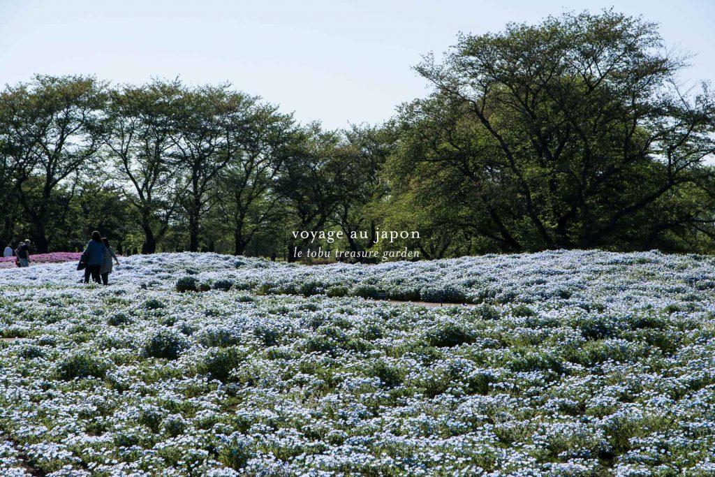 le Tobu Treasure Garden à Tatebayashi au Japon