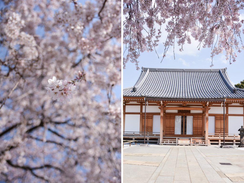 temple Chomyoji dans le quartier de Yanaka à Tokyo