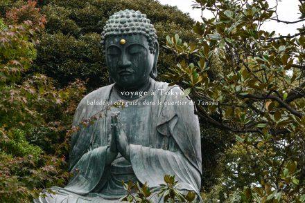 voyage tokyo quartier yanaka temple