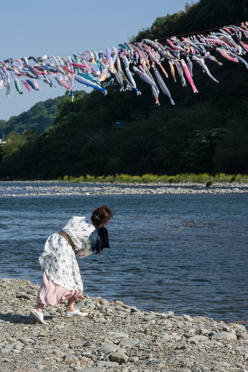 Kodomo No Hi à deux heures de Tokyo à Sagami river à coté du Takada bridge avec les carpes koinobori