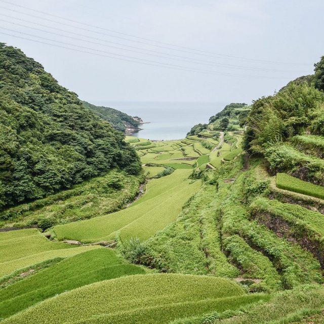 Aprs la prfecture de Fukuoka nous sommes partis dans lahellip