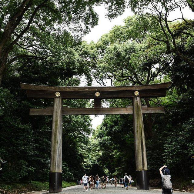 A lentre du sanctuaire MeijiJingu se trouve un immense toriihellip