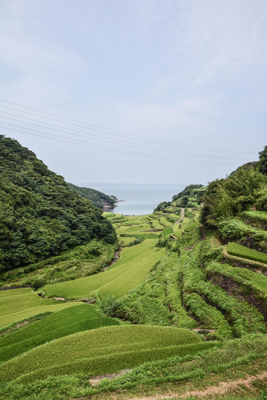 Les rizières Hamanoura no Tanada dans la préfecture de Saga sur l'île de Kyushu au Japon