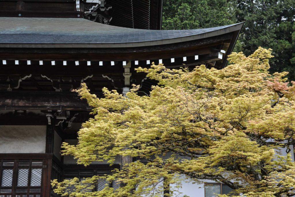 temples de Higashiyama Teramachi à Takayama dans les alpes japonaises, Japon