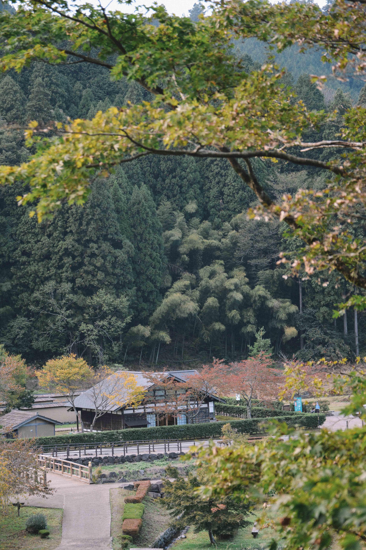 visiter les ruines historiques de Asakura Clans Ruins dans la prefecture de Fukui au Japon